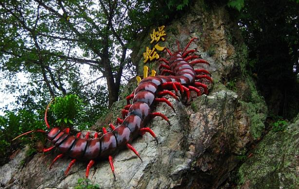 Centipede temple Seremban bungkusit launch delivery food parcel